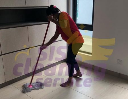 Basic Home Cleaning