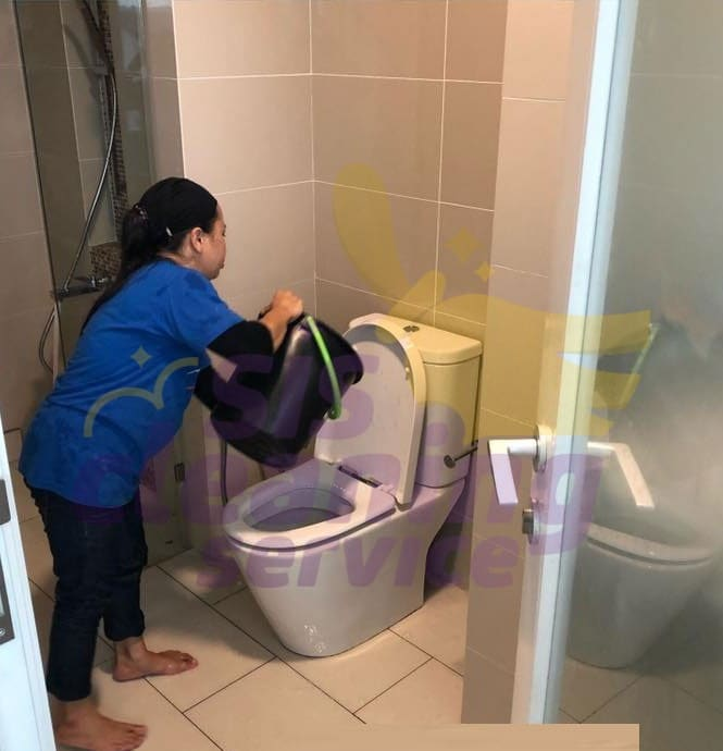 Basic Home Cleaning - Bathrooms